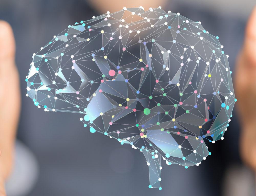 Neuroéducation, neuropédagogie? Que se cache-t-il derrière ces mots?