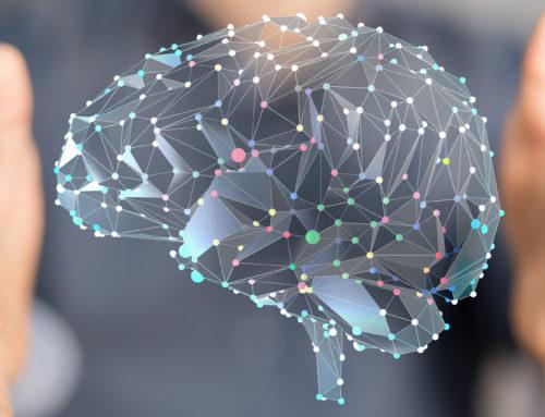 Neuroéducation, neuropédagogie ? Que se cache-t-il derrière ces mots ?